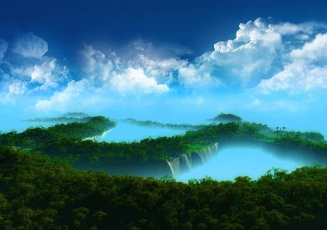 Amazing Forest 1